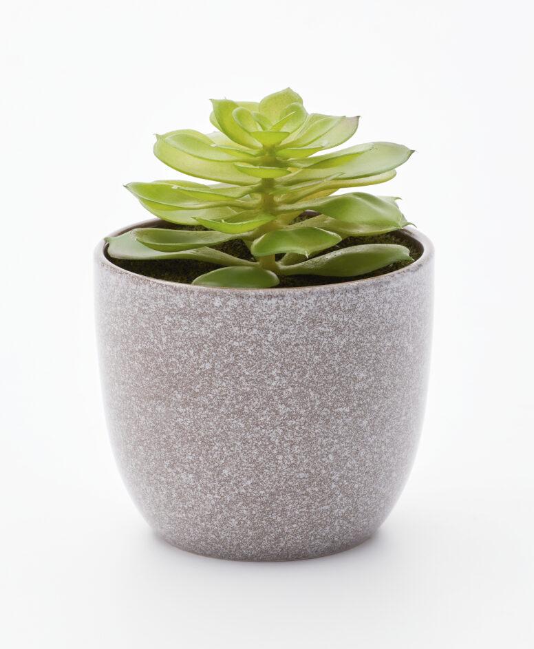 Sztuczna roślinka