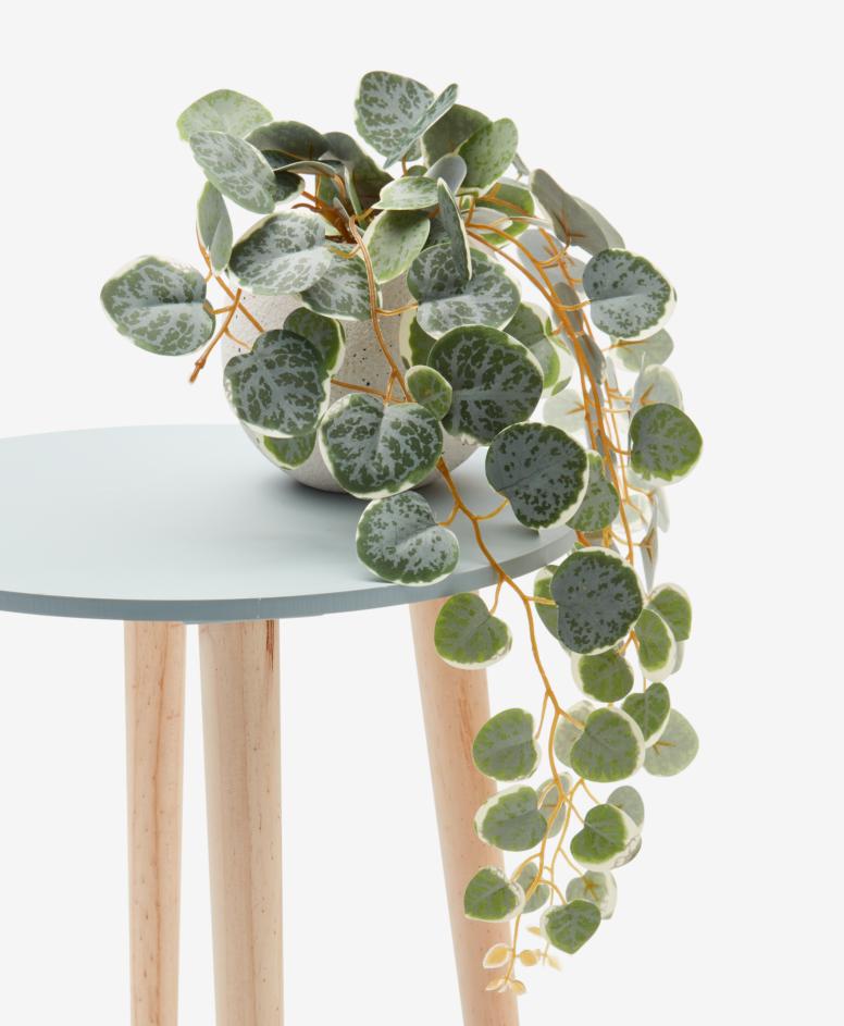 Sztuczna roślina w ceramicznej doniczce , kolor biały, ø 14 cm, wys. 14 cm, dł. rośliny 40 cm