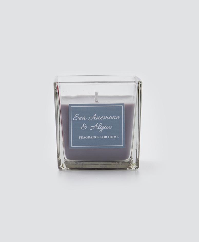 Świeca zapachowa w pojemniku, kolor szary, 8 x 8 x 8 cm